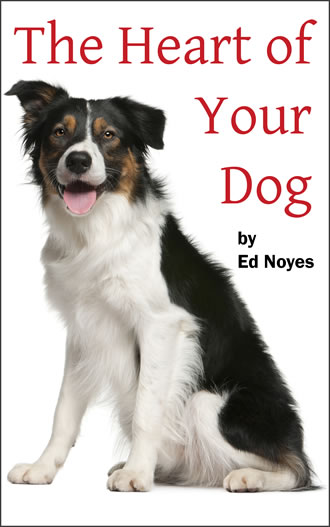 Heart of Your Dog Book