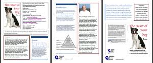 3 Page PDF Summary