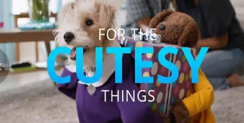 Cutesy Chase Freedom TV Spot, 'Dog Costumes'