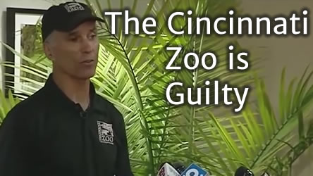 Cincinnati Zoo is Guilty