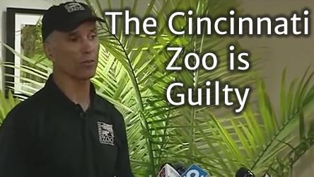 Cincinnati Zoo is Guilty